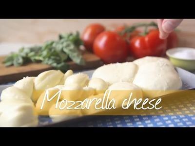 How to make mozzarella cheese - Allrecipes.co.uk