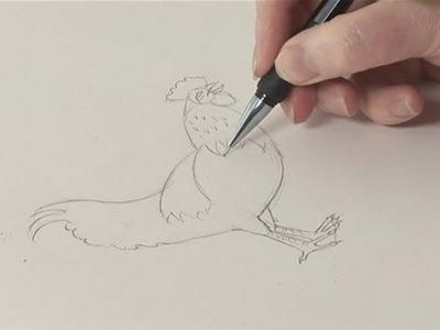 How To Sketch A Chicken