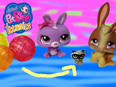 LPS Teensies Tiny Small Littlest Pet Shop Series Collection Opening Unboxing Cookieswirlc