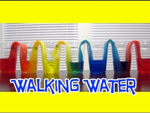 WALKING WATER Easy Kids Science Experiments