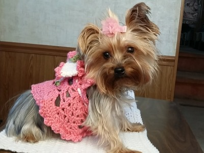 "Crochet ""Glama's Adorable Princess Puppy Dress"""