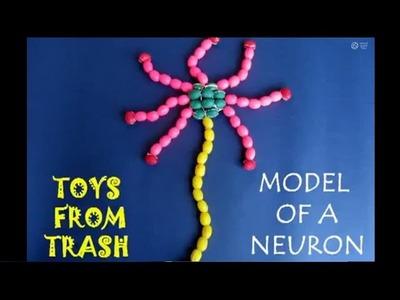 MODEL OF A NEURON - ENGLISH - 9MB
