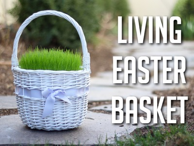 How to Make a Living Easter Basket