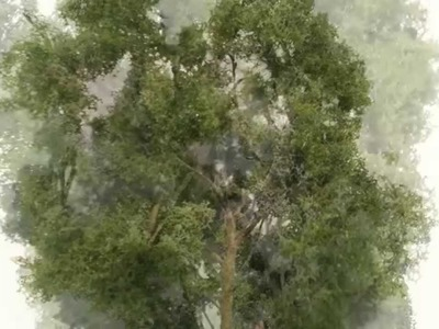 How to make realistic model trees - bäume selber bauen