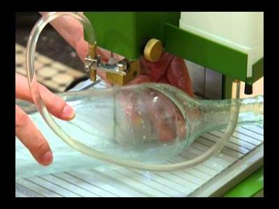 Recycled Bottle Terrarium