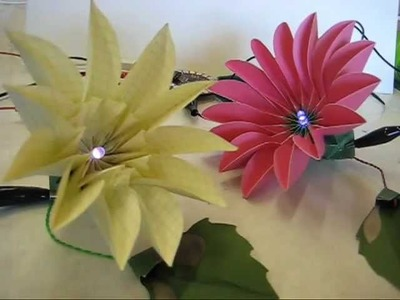 Blooming paper flowers