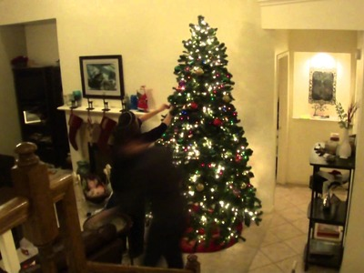 Decorating a Christmas Tree in 123 Seconds (2011)