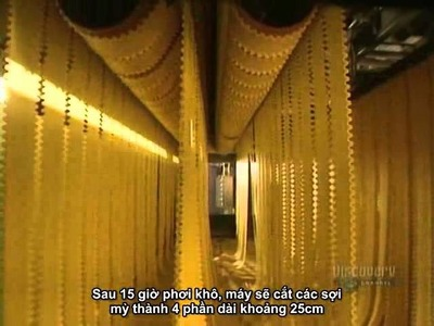How to make Pasta - Factory Production [vietsub]