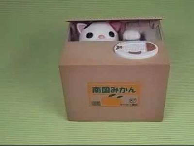 Cool Japanese Money Box