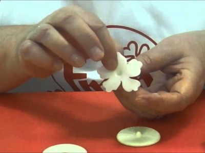 How to Make a Hawaiian Flower