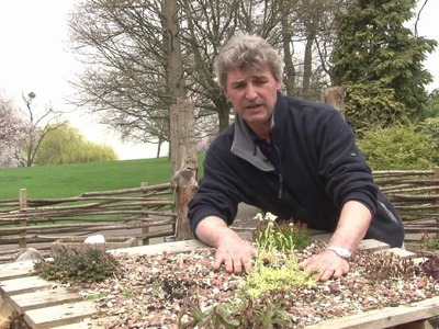 Make your own Bug Hotel with the Horniman Museum