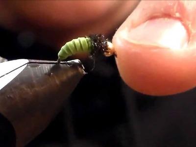 Fly Tying: Rubber Band Caddis Larvae