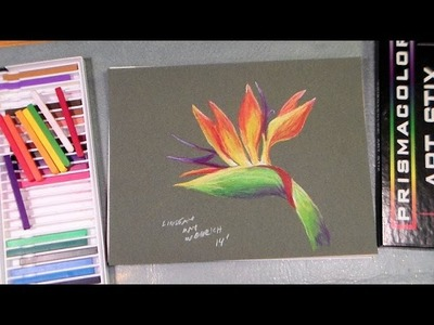 Bird of paradise artstix full tutorial