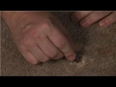 Carpet Cleaning : Household Tips for Removal of Bleach Stains from a Carpet