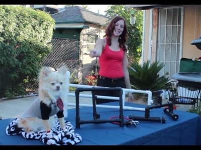 DIY Camera Stabilizer, Table Dolly, & Snorricam-Sample Footage