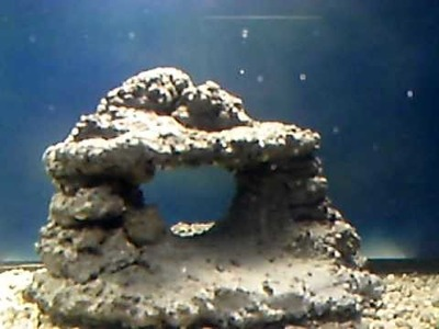 New aquarium with homemade rock