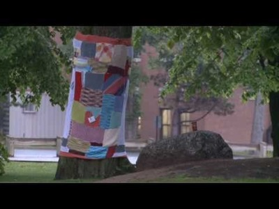 Public Tree Yarn Wrap