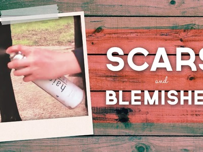 Covering Scars & Blemishes On A Dark Coat   horseland.com.au