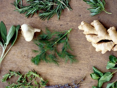 How to Cook With Basic Herbs  P. Allen Smith Cooking Classics