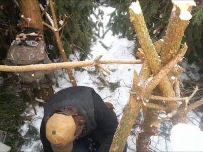 Bush craft pine shelter - Doing some more work on it