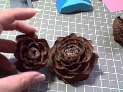 Altered pine cone roses.flowers and very very small big lots haul