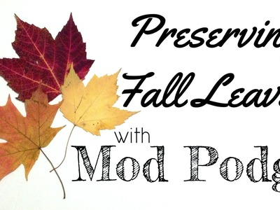 Preserving Pressed Leaves with Mod Podge #FallHOA
