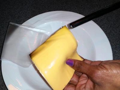 Plastic vs American Cheese