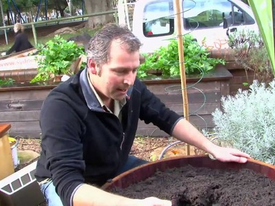 How to make a wicking bed container food garden