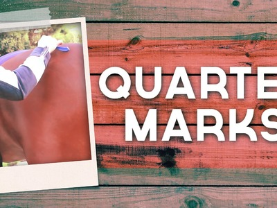 Putting Quarter Markers Patterns On Your Horses Rump   weatherbeeta.com