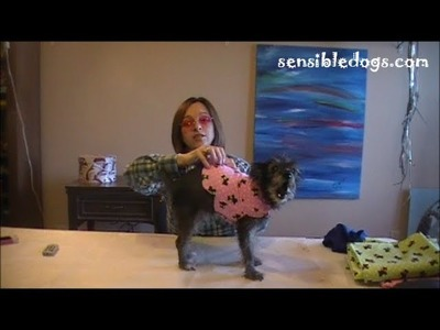 Easy Collar Coat for Your Baby Dog