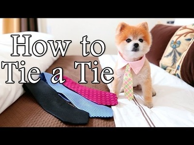 How To Tie A Tie By Gentleman Norman
