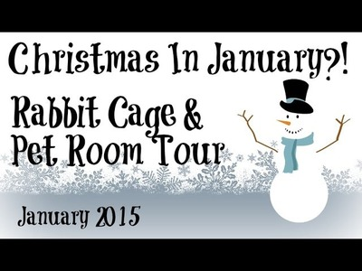 BudgetBunny: Christmas In January?! | Rabbit Cage & Pet Room Tour