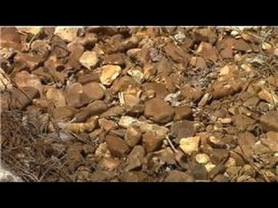 Landscaping Tips : Landscaping Ideas With Pebbles