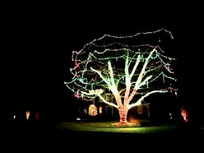 Outdoor Lighting Perspectives Christmas Tree