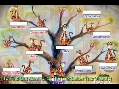 Family Tree Scrapbooking   How to Make a Family Tree Chart Into a Scrapbook