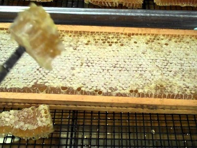 How to eat Comb Honey