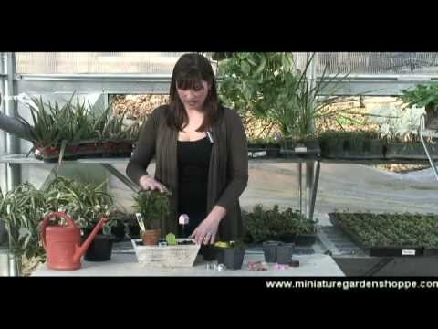How to make a miniature garden Easter centerpiece