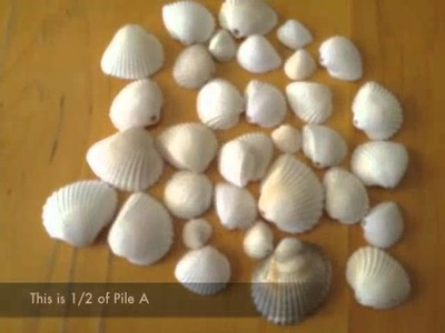 Make a Seashell Mobile