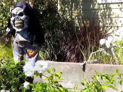 Halloween Decoration Ideas for Your house.yard