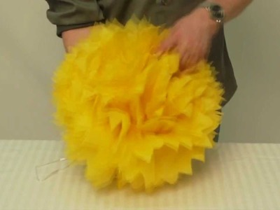 Tissue Paper Pom Poms - Big Dot of Happiness