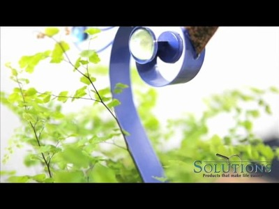 Summer Outdoor Entertaining Tips  |  Solutions.com  |  Practical Outdoor Décor