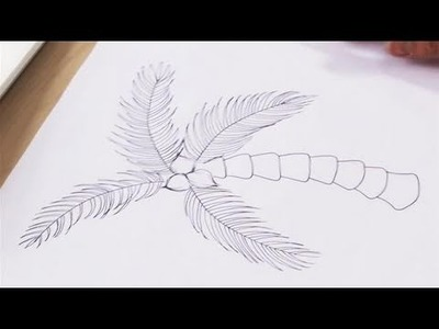 How To Illustrate A Palm Tree