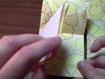 Meander Book Video 1