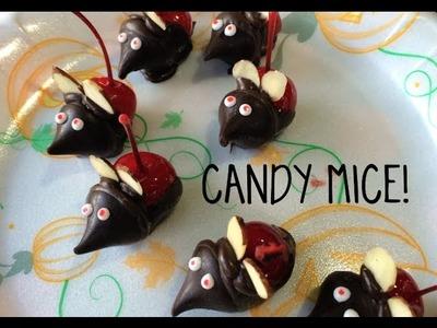 YUMMY DIY- CANDY MICE!