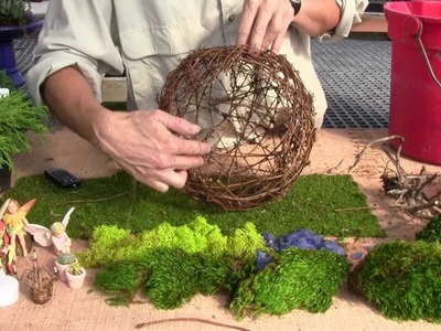 How to Plant a Willow Fairy Sphere with Plants (part 1)