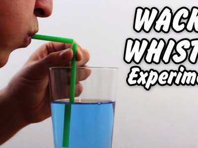 Science Experiments That You Can Do At Home | Wacky Whistle Amazing Science Experiment