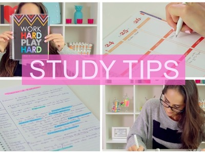 Climb your way to an A! | STUDY TIPS + DIY Organization |