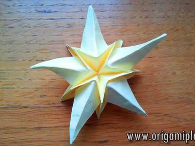 Sea Star Origami
