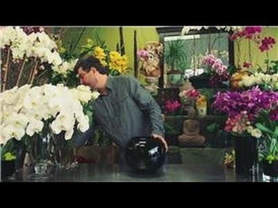 Flower Arrangements : How to Make Valentine Flower Centerpieces