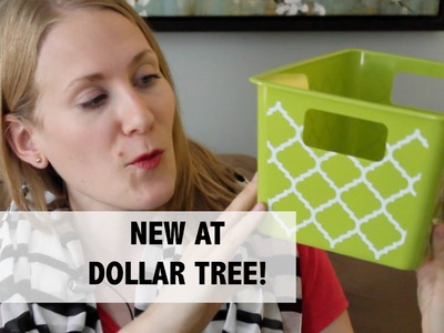 DOLLAR TREE ORGANIZERS! | New Products and More